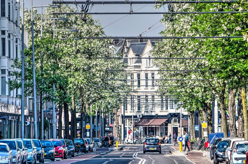 View of Nieuwe Binnenweg Street