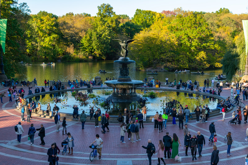 Visit and have fun in Central Park