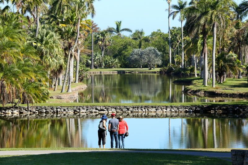 Get Lost In Tropical Gardens