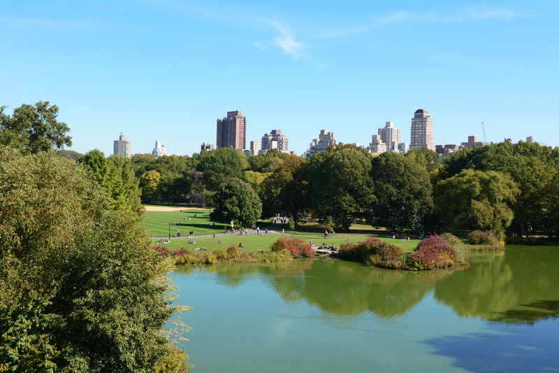 View of Turtle Pond in Central Park