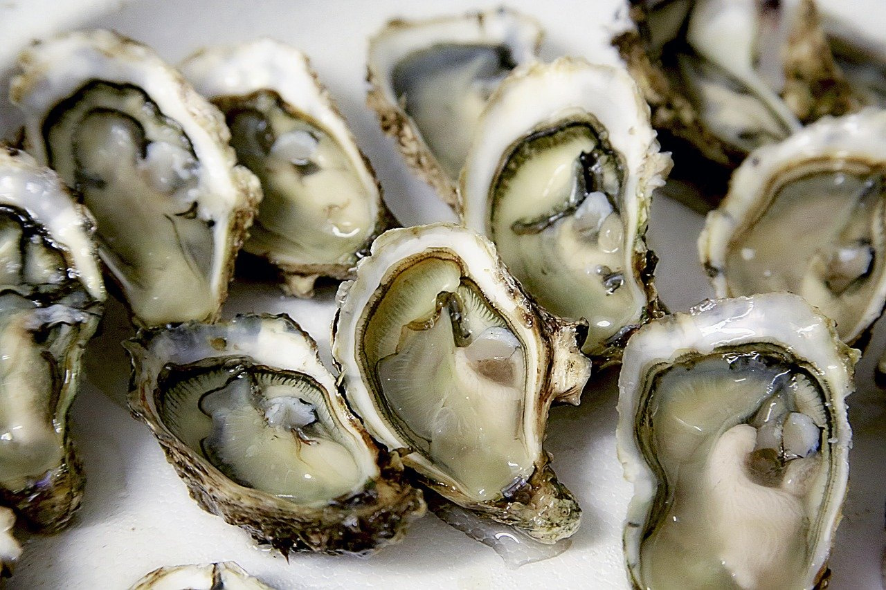 Try delicious Oysters in Miami