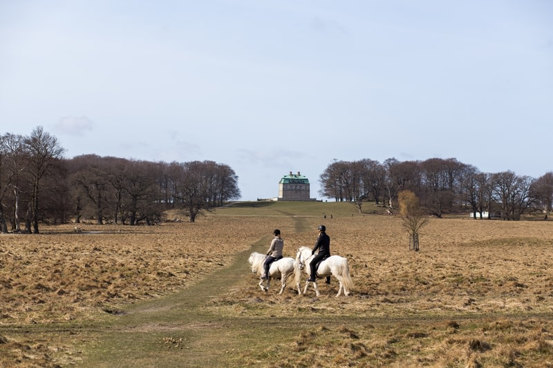 Horse Riders in The Deer Park close to Copenhagen